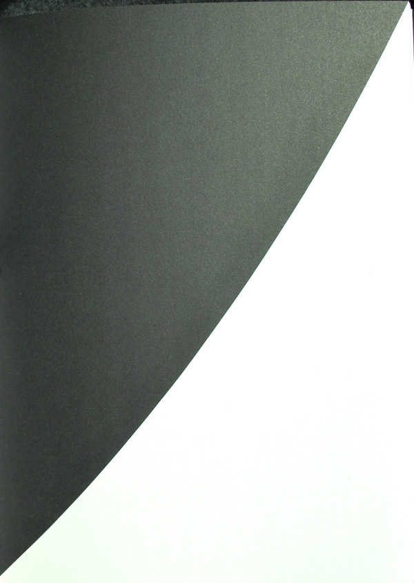 Ellsworth Kelly Lithograph