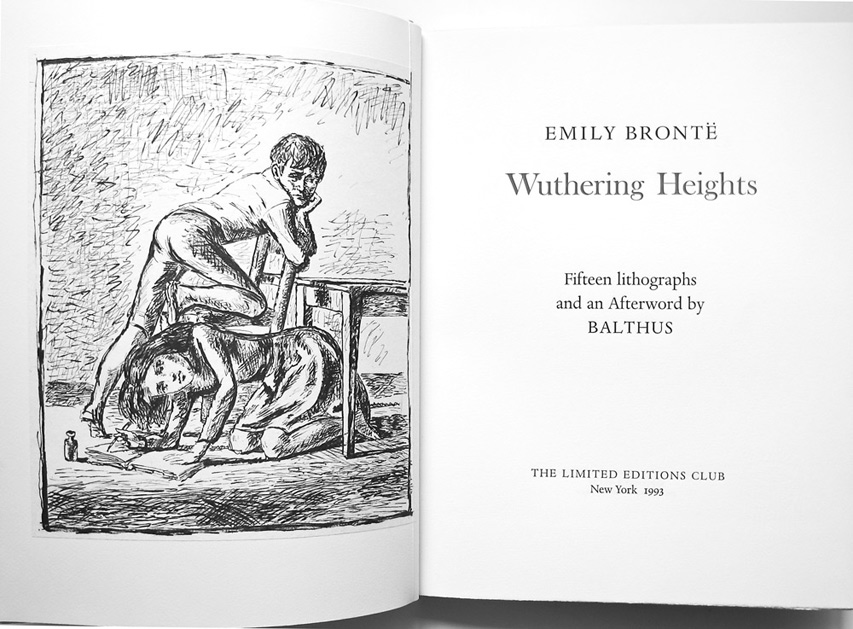 an analysis of the role of books in wuthering heights a novel by emily bronte In this lesson, we explore the role that feminism plays in 'wuthering heights' by emily bronte feminism & role of women in wuthering heights violence in wuthering heights: examples & analysis.